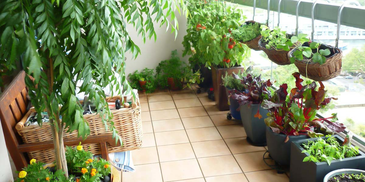 vivir-ecoamigable-plantas-balcon